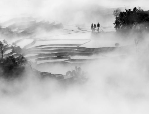 Hani Rice Terrace Photography